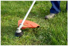 On-Demand Lawn Weed Trimming Lawn And Garden, Garden Tools, Best Lawn Edger, Weeds In Lawn, Outdoor Tools, Fort Collins, Lawn Care, Clean Up, Lawn Mower