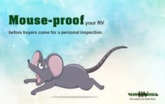 Using your motor home for years makes it more accessible to rodents. Pest-proof it before you Sell your RV.