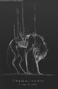 Wolf drawing art work bones black and white spirit animal Art Sketches, Art Drawings, Arte Dope, Illustrations, Illustration Art, Arte Obscura, Vent Art, Arte Horror, Creepy Art