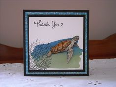thank you so turtlely much! by rokale - Cards and Paper Crafts at Splitcoaststampers