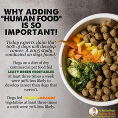 Interesting info...veggies aren't just good for you & me. They're good for our four-legged friends too.
