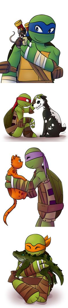 Turtles best friend by Jojodear