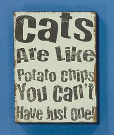Cat Sign                                                                                                                                                                                 More