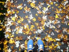 Fall 2012 my blue sneakers stepping on yellow leaves