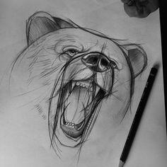 Custom Tattoo - Antalya , Bear sketch
