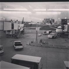 good morning america @boston airport