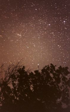 Night Sky (Crimson), 2009   Ryan McGinley