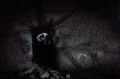 Krstf.com - Krystof Kalina Photography