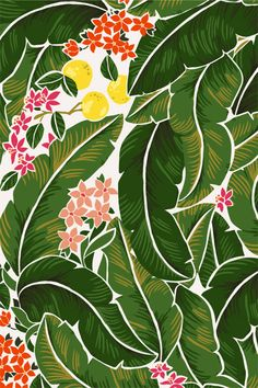 Karla Pruitt - Dreaming of warmer weather (Banana Leaves and Citrus Pattern) Graphic Patterns, Textile Patterns, Textile Prints, Print Patterns, Motif Tropical, Tropical Pattern, Tropical Prints, Surface Pattern Design, Pattern Art