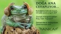Doğa Ana Cevaplıyor Animals, Animaux, Animales, Animal, Dieren