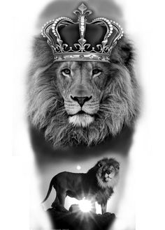 Own design made in photoshop – Tatto Ideas Lion Tattoo With Crown, Lion Head Tattoos, Tribal Tattoos, Tattoos Skull, Lion King Pictures, Lion Images, Lion And Lioness, Lion Of Judah, Lion King Art