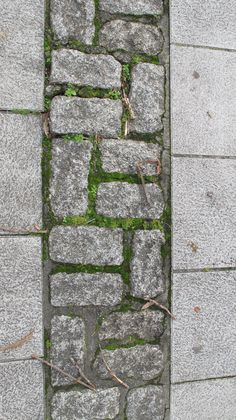 Via Facebook Gardenalia Garden Paving, Garden Paths, Paving Pattern, Paving Design, Paving Ideas, Dry Stone, Paving Stones, Stone Work, Building Materials