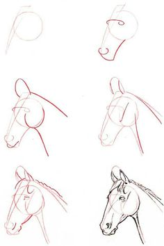 How to draw a horse head. Horse sketch step by step. Horse Drawings, Art Drawings Sketches, Easy Drawings, Sketch Drawing, Easy Horse Drawing, Horse Drawing Tutorial, Drawing Ideas, Horse Head Drawing, Easy Animal Drawings