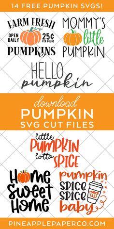 Cricut Htv, Svg Files For Cricut, Cute Pumpkin, Little Pumpkin, Silhouette Machine, Silhouette Cameo, Sweet Spice, Baby Shower Fall, Cricut Tutorials