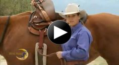Julie Goodnight Horsemanship talks about using different saddle riggings. Aqha Western Pleasure, Horse Videos, Horse Training Tips, M Photos, Horse Tack, Labs, Good Night, Equestrian, Community