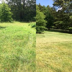 Before and after photo. Brooks Lawn Service taking care of home and lawn needs. Contact Fred Brooks @901-338-6347 or fred@brooksls.com. Visit website at www.brooksls.com. YouTube channel https://www.youtube.com/user/bigfredtn Instagram bigfredtn_lawncare #millington #atoka #brighton #memphis #arlington #bartlett #tn #kubota #scag #stihl #gmc #mowing #mow #landscaping #lawncare #lawn