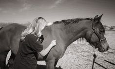 Equine Massage Therapy: The Key To Keeping Your Horse Healthy And Performance Ready - Co...