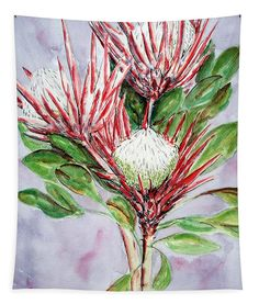 A beautiful artwork of proteas originally painted in watercolors. Perfect for any space and easy to hang with hemmed edges. Wall Spaces, Beautiful Artwork, Art Decor, Home Decor, Wall Tapestry, Watercolors, Fine Art America, Original Artwork, Moose Art