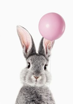 Bunny With Balloon Mini Art Print by Lotus Print Studio Without Stand 3 x 4 Kerstin B. Animals And Pets, Baby Animals, Funny Animals, Cute Animals, Tier Wallpaper, Animal Wallpaper, Animal Pictures, Cute Pictures, Desenio Posters