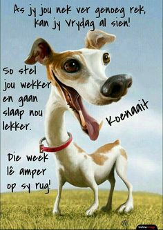 Good Night Quotes, Good Morning Good Night, Goeie Nag, Goeie More, Afrikaans Quotes, Day Wishes, Strong Quotes, Birthday Greetings, Daily Quotes