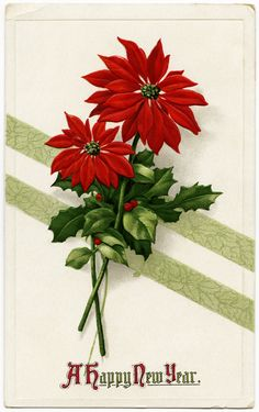 Old Design Shop ~ free digital image: vintage happy new year postcard with pointsettia