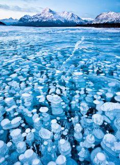 canada .... frozen gas bubbles