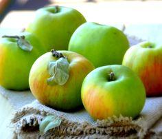 35 Apple Desserts You Must Make