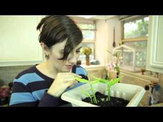 Easy Ways To Save Money, Eat Well And Have Fun By Regrowing Old Vegetable Scraps | True Activist