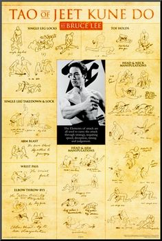 Bruce Lee Teachings Poster
