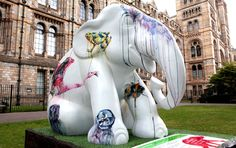 NaturePlus: What's new at the Museum: Elephants arrive on the ...