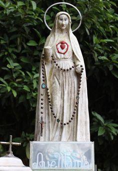 Lady Of Fatima, Our Lady, Vietnam, Mary, Dreadlocks, Hair Styles, Beauty, Santa Maria, Dios