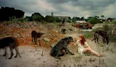 'The Pack, This too Shall Pass' series © Tamara Dean 2010 86 x Pure pigment print on cotton rag Courtesy, the artist and 'Olsen Irwin Gallery' This Too Shall Pass, Post Apocalypse, Book Photography, Fashion Photography, Moleskine, Mammals, In This World, Dean, Cool Photos