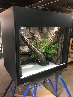 Feeding Your Bearded Dragon In The Right Way Reptile House, Reptile Habitat, Reptile Room, Reptile Cage, Rabbit Cages, Cat Cages, Bearded Dragon Cage, Bearded Dragon Habitat, Terrarium Reptile