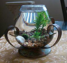 Marimo Moss Ball Terrarium, rock, seashells, Plastic plant, glass Jar, Patina metal base