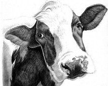 Cow Art Print – Hand Drawn Animal Pencil Drawing / Sizes Giclee (UK Artist) – Nature Wildlife – Wall Art Nursery Picture – DIY World Pencil Drawings Of Animals, Art Drawings, Cow Drawing, Drawing Step, Drawing Ideas, Cow Pictures, Pencil Drawing Tutorials, Cow Painting, Cow Art