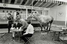 Making a bet on myself in the surreal real life photos of Britain. Windsor Horse Show, Photographer Tony Ray-Jones documents the English at leisure during the at an exhibition at Guernsey Photography Festival Garry Winogrand, Richard Avedon, Wells, Yale School Of Art, Harold Lloyd, Magnum, Martin Parr, Through The Looking Glass, Show Horses