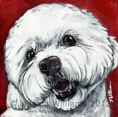 Bichon Frise by NakedKittyCreations.deviantart.com on @DeviantArt