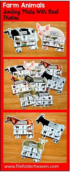 These Farm Animals Sorting Mats w/ Real Photos include 8 unique sorting mats that focus on identifying farm animals and non-identical sorting or matching. At an independent workstation, center or language group, students complete the sorting mats by ide Farm Activities, Animal Activities, Sorting Activities, Preschool Activities, Language Activities, Sorting Games, Farm Animals Preschool, Preschool Learning, Preschool Farm Theme
