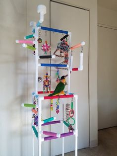 Great Pic caique parrot Strategies Keeping ones feathered companion healthy and balanced usually means often managing their particular health. Conure Cage, Parakeet Cage, Parakeet Toys, Diy Cockatiel Toys, Fancy Parakeet, Conure Bird, Cockatiel Cage, Diy Parrot Toys, Pets