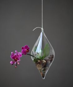 Aerárium slza - Zahrada na niti