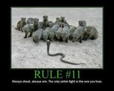 Rules of a gunfight – Kris Redbeard Teamwork Funny, Teamwork Quotes, Military Quotes, Military Humor, Usmc Quotes, Funny Motivational Quotes, Warrior Quotes, Badass Quotes, Decir No