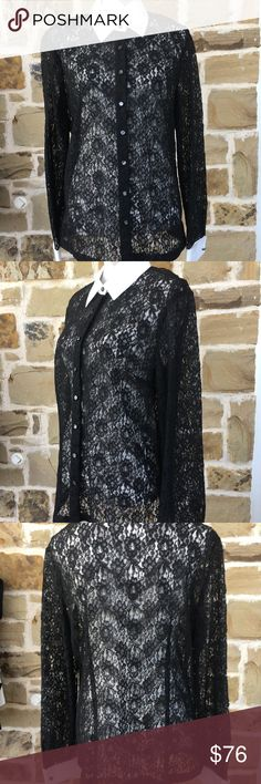 🎁 HP 🎁 Ann Taylor Lace Blouse NWT!  So beautiful!!! Pictures don't do this top justice!  Great for a party with a cami or bustier underneath.  French cuffs.  Pit to pit approx 22. 🎁 Host pick by @julesgotjewels! 😻 please check out her lovely closet too! Ann Taylor Tops Blouses