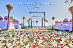 A perfect frame for an unforgettable exotic wedding, Mr and Mrs R (Ban Sairee, Koh Samui) by The Signature Weddings