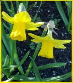 Alternative spirituality for Easter