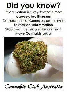 Did you know? Inflammation is a key factor in most age-related illnesses. Components of Cannabis are proven to reduce inflammation. Stop treating people like criminals. Make Cannabis legal.