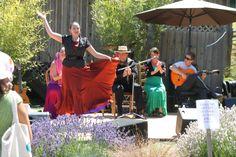 Flamenco dance entertainment at the Lavender Festival Family Travel, Lavender, Salt, Ballet Skirt, Entertainment, Dance, Island, Adventure, Spring