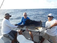 SailFishing in cancun.  Let's go fishing on the Kianah.  #fishingcancun #sportfishingcancun #kianahssportfishing   www.deepseafishingcancun.com