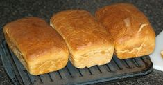Learn how to make homemade bread. This bread recipe is a white bread that is simple t make. It makes 2 loaves and is baked for 35 minutes. Best White Bread Recipe, Tasty Bread Recipe, Quick Bread Recipes, Pork Chop Recipes, Cooking Recipes, Everyday Bread Recipe, Bread Rolls, How To Make Bread, Bread Baking