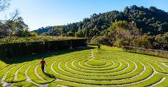 São 26 jardins incríveis ideais para quem quer relaxar e fugir da rotina