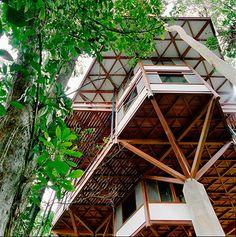 entre os projetos executados por hélio olga está a casa tijucopava, de marcos acayaba